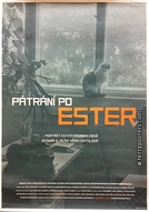 Em busca de Ester (Patrani po Ester)