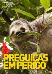 Preguiças em perigo - Poster / Capa / Cartaz - Oficial 1