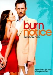 Burn Notice - Operação Miami (1ª Temporada) - Poster / Capa / Cartaz - Oficial 1