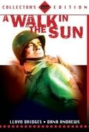 Um Passeio ao Sol (A walk in the Sun)