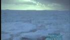 Shackleton's Antarctic Adventure // Trailer
