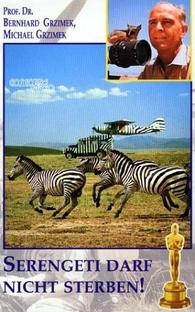 Ao Leste do Congo - Poster / Capa / Cartaz - Oficial 1