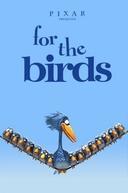 Coisas de Pássaros (For the Birds)