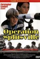 Nada Em Comum  (Operation Splitsville)