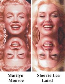 Sherrie Lea Laird vs Marilyn Monroe - Poster / Capa / Cartaz - Oficial 1