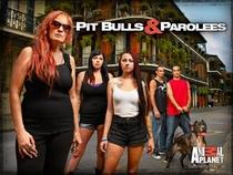 Pit Bulls and Parolees (4ª temporada) - Poster / Capa / Cartaz - Oficial 1