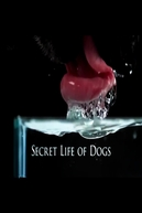 Secret Life of Dogs (Secret Life of Dogs)
