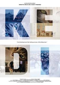 Gatos - Poster / Capa / Cartaz - Oficial 2
