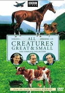Criaturas Grandes e Pequenas (1ª Temporada) (All Creatures Great and Small (Season 1))