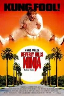 Um Ninja da Pesada - Poster / Capa / Cartaz - Oficial 3