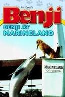 Benji - Um colosso de cachorro (Benji Takes a Dive at Marineland)