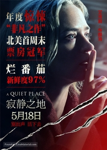 Um Lugar Silencioso - Poster / Capa / Cartaz - Oficial 9