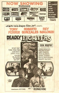 Deadly Fighters - Poster / Capa / Cartaz - Oficial 1