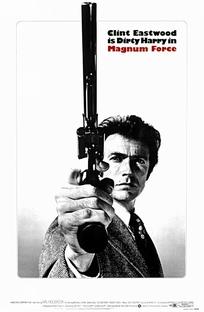 Magnum 44 - Poster / Capa / Cartaz - Oficial 1