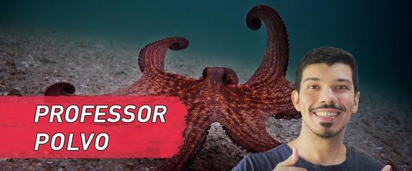 PROFESSOR POLVO - um mergulho e tanto | Crítica do filme