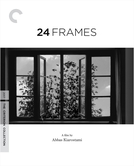 24 frames (24 frames)