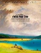 A Árvore dos Frutos Selvagens (Ahlat Agaci)