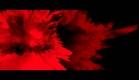 《Mask》 植村秀 x 王家衛2011幻金光影聖誕系列