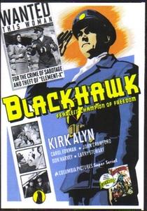 O Falcão Negro - Poster / Capa / Cartaz - Oficial 2