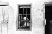 Holocausto Brasileiro - Manicômio de Barbacena - Poster / Capa / Cartaz - Oficial 1