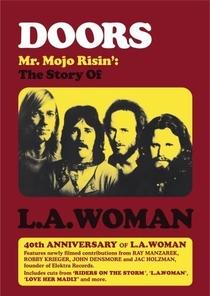 Mr. Mojo Risin' - Poster / Capa / Cartaz - Oficial 1