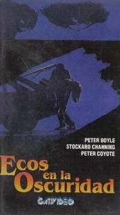 Ecos na Escuridão - Poster / Capa / Cartaz - Oficial 2