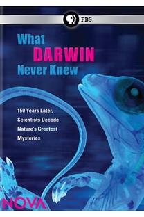 """""""Nova """"O Que Darwin Nunca Soube - Poster / Capa / Cartaz - Oficial 1"""