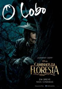 Caminhos da Floresta - Poster / Capa / Cartaz - Oficial 6