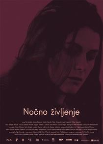 Vida Noturna - Poster / Capa / Cartaz - Oficial 1