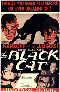 O Gato Preto - Poster / Capa / Cartaz - Oficial 6