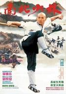 O Templo de Shaolin 3: As Artes Marciais de Shaolin (Nan bei Shao Lin)