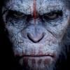 Liga dos Filmes: Planeta dos Macacos: O Confronto - Review