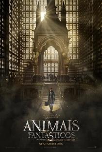 Animais Fantásticos e Onde Habitam - Poster / Capa / Cartaz - Oficial 3