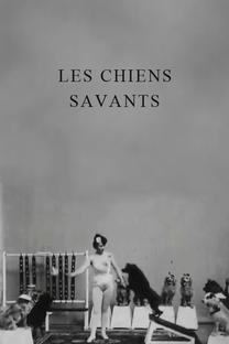 Les chiens savants - Poster / Capa / Cartaz - Oficial 1