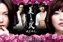 Utsukushiki Wana ~Zanka Ryouran~ - Poster / Capa / Cartaz - Oficial 1