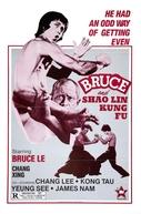 Bruce and Shaolin Kung Fu (Da mo tie zhi gong )