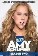 Inside Amy Schumer (2ª Temporada) (Inside Amy Schumer (2ª Temporada))