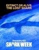 O Tubarão Perdido