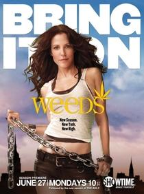 Weeds (7ª Temporada) - Poster / Capa / Cartaz - Oficial 2