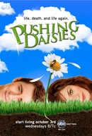 Pushing Daisies (1ª Temporada) (Pushing Daisies (Season 1))