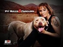 Pit Bulls and Parolees (1ª temporada) - Poster / Capa / Cartaz - Oficial 1