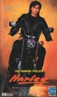 Harley (Harley)
