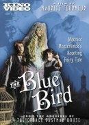 O Pássaro Azul - Poster / Capa / Cartaz - Oficial 1