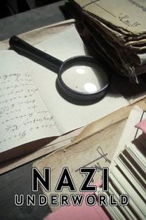 Os Segredos do Terceiro Reich - Poster / Capa / Cartaz - Oficial 3