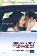 Girlfriends' Guide to Divorce (3ª Temporada) (Girlfriends' Guide to Divorce (Season 3))
