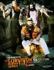 WWE Survivor Series - 2013