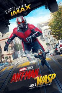 Homem-Formiga e a Vespa - Poster / Capa / Cartaz - Oficial 11