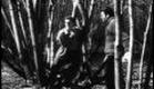 Jean Genet---Un Chant d'Amour (full movie)