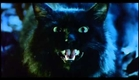 The Cat (1992) Trailer English Subtitles