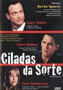 Ciladas da Sorte - Poster / Capa / Cartaz - Oficial 6